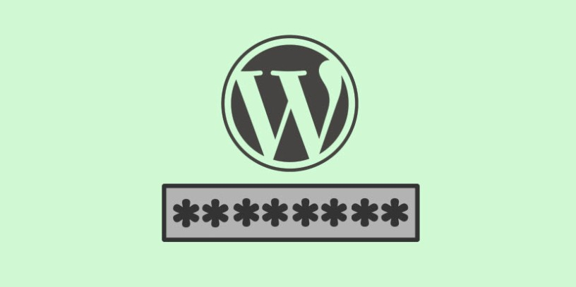A Friendly Guide About Password Protected Pages in WordPress