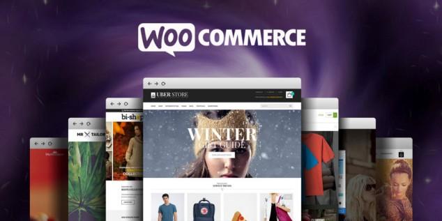top-ecommer-wordpress-theme-woocommerce