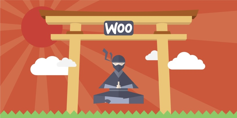 [Infographic] 13 WooCommerce Ninjas You Should Know About